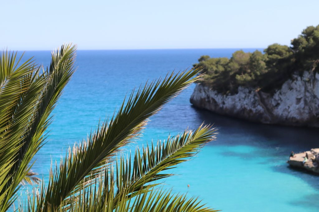 Mallorca im Fruehling Travelguide