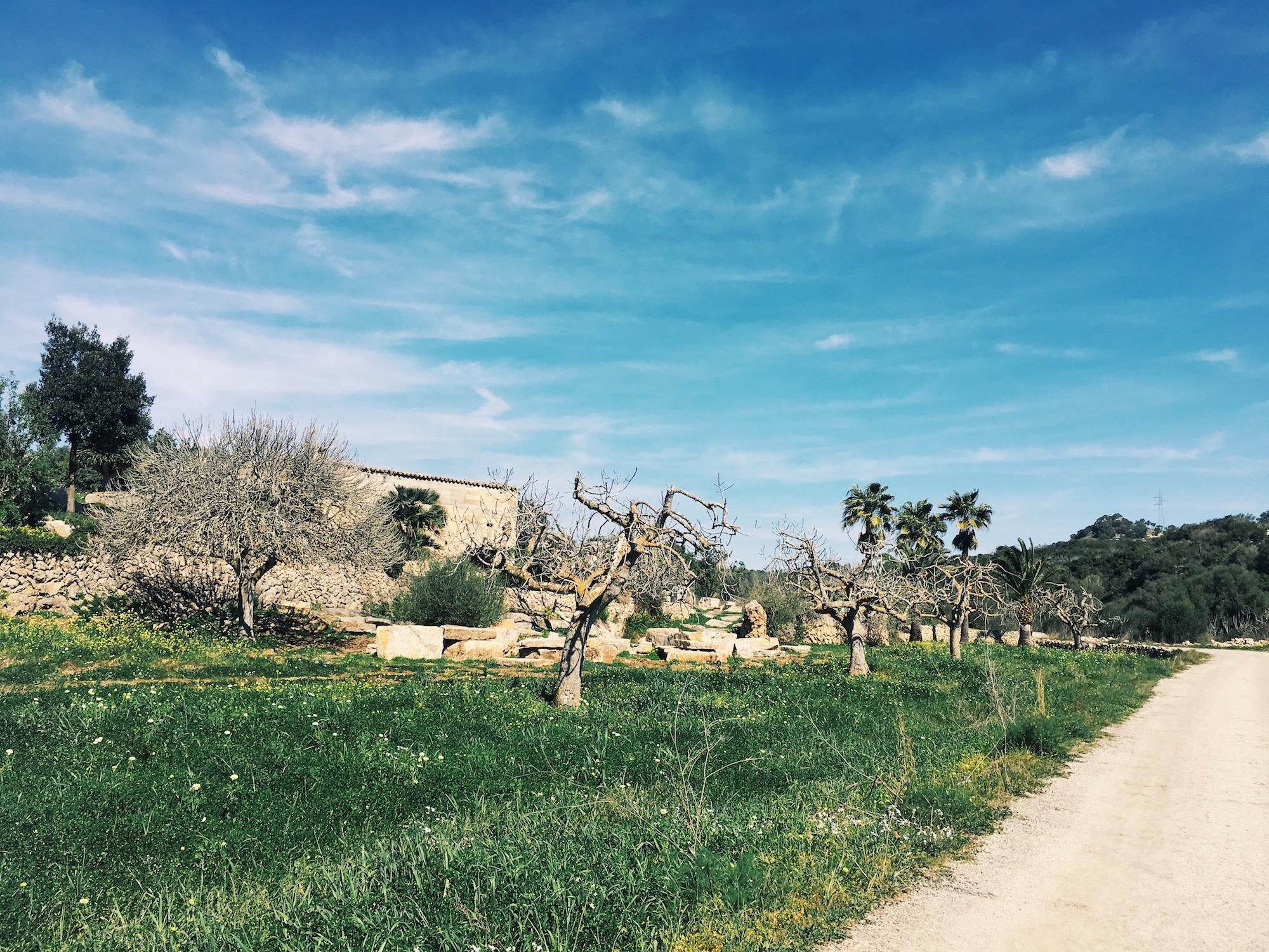 Mallorca Tipps Reisebericht auf meinem Modeblog
