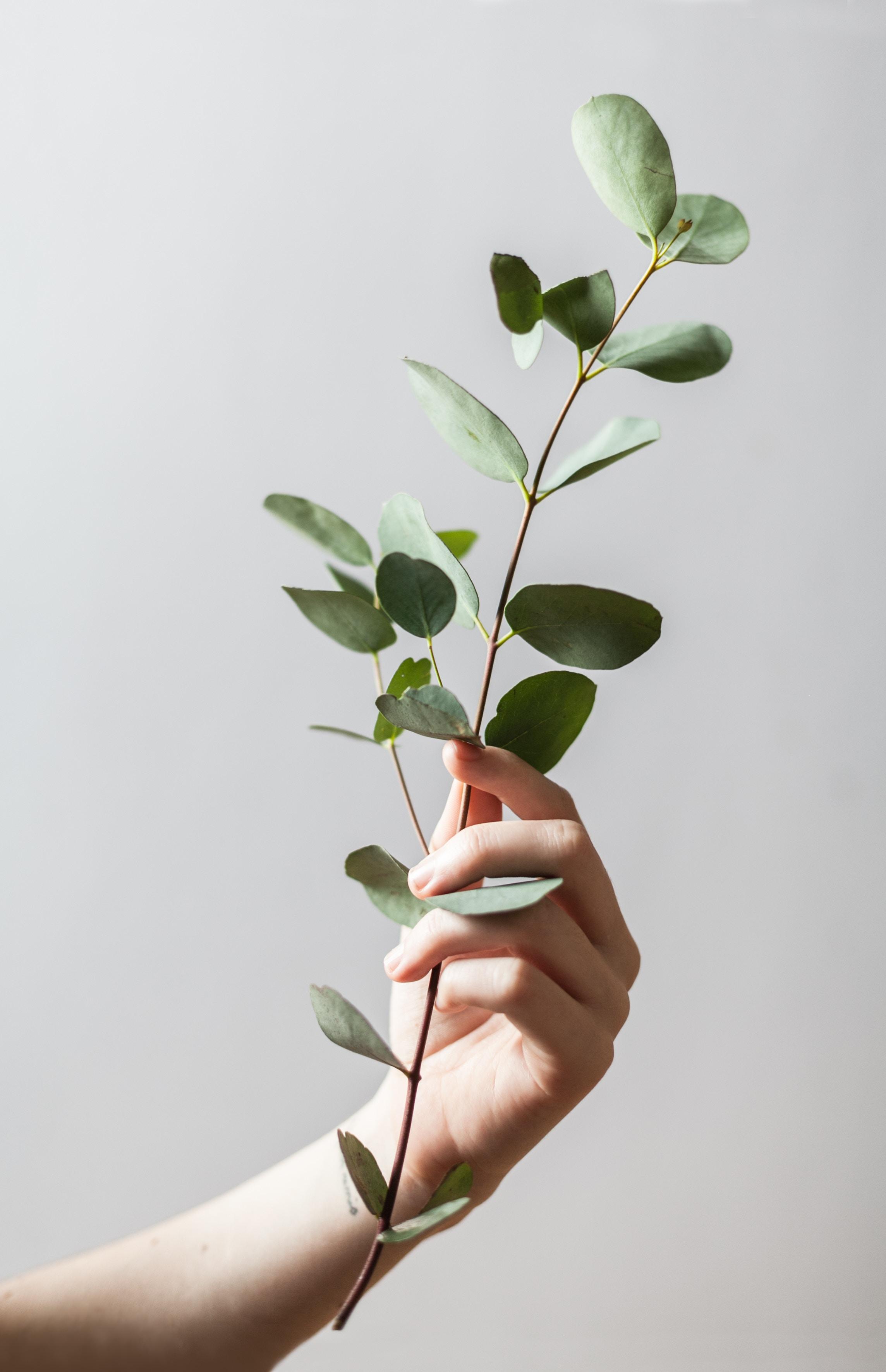Nachhaltigkeit Tipps für den Alltag auf meinem Modeblog