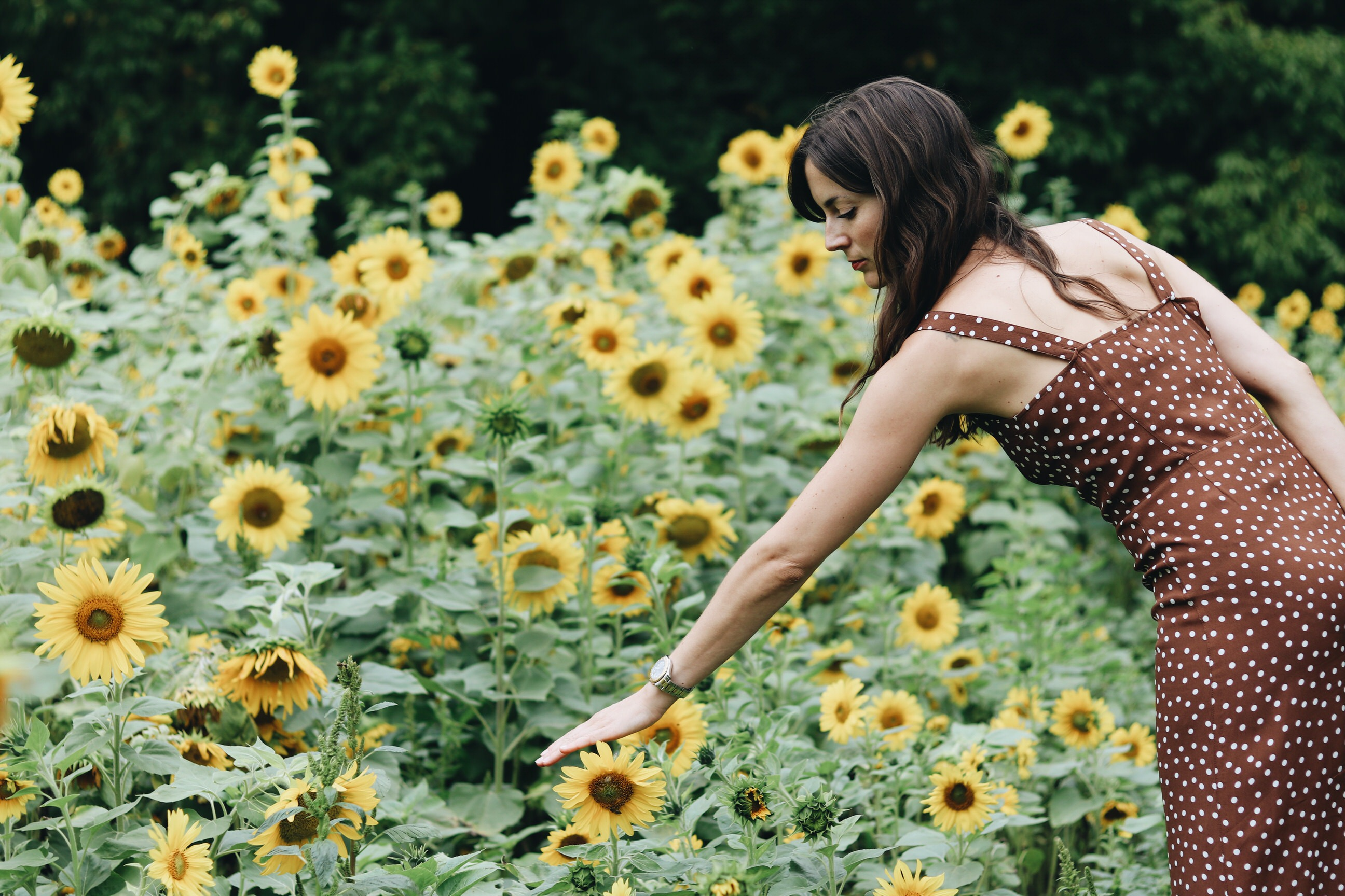 Modeblog Outfit Sommer French Chic Jeanne Damas Mode Blog Polka Dots braunes Kleid